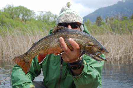 Rodrigo Amadeo with another trout caught fly fishing in Argentina