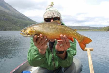 Fly Fishing Argentina Patagonia