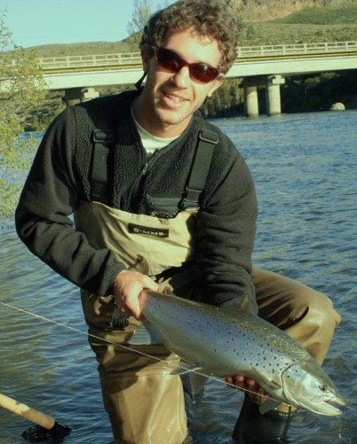 Nice Brown from the upper Limay river
